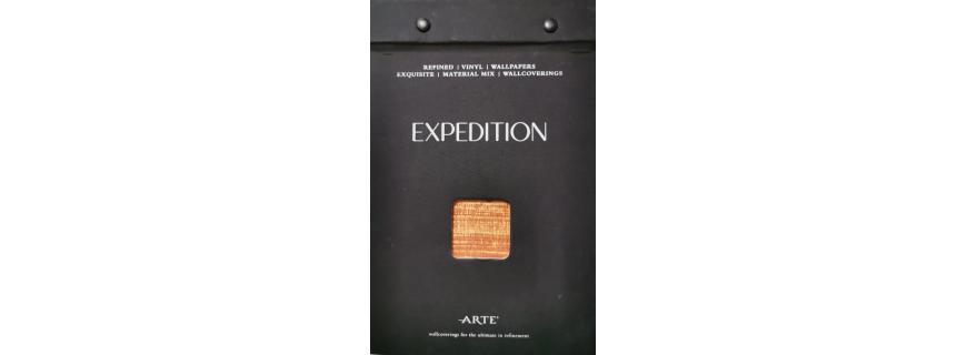 Arte - Expedition